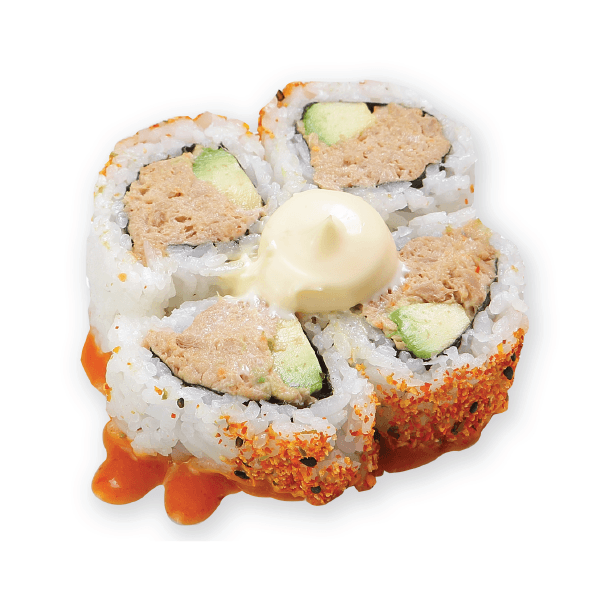 Spicy Tuna&Avo Medium Roll-8
